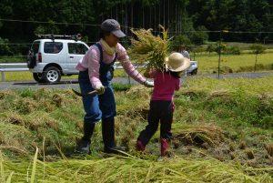《コラム》32 「収穫祭」