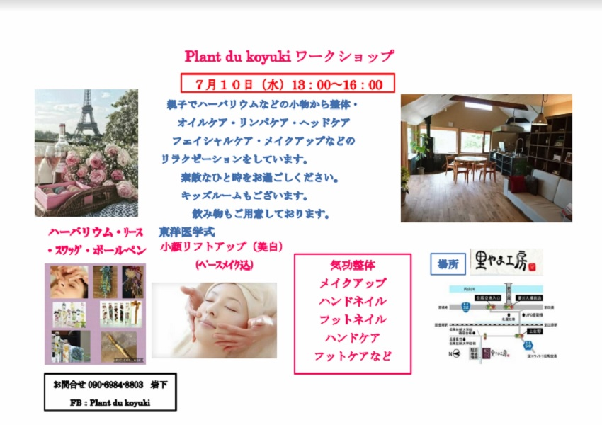 Planto du koyuki