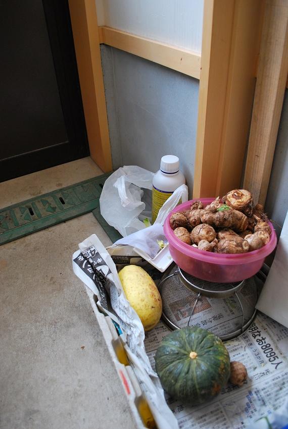 庭を見ながらご飯をつくる日本の台所