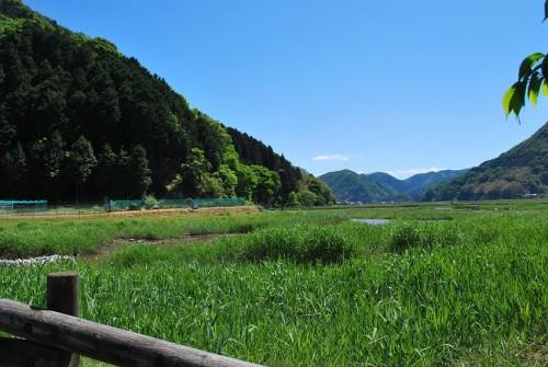 170518 blog DSC_0093